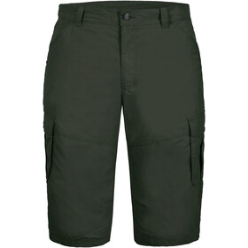 Icepeak Ep Ardoch Shorts Men, dark green